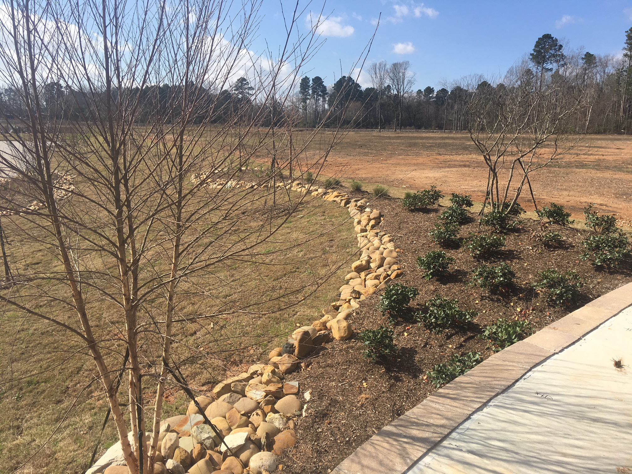 Terra Bella Landscape Design & Management | Just another WordPress site